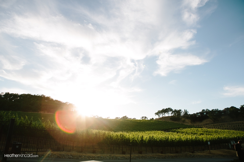 lancaster-estate-healdsburg-wedding-047
